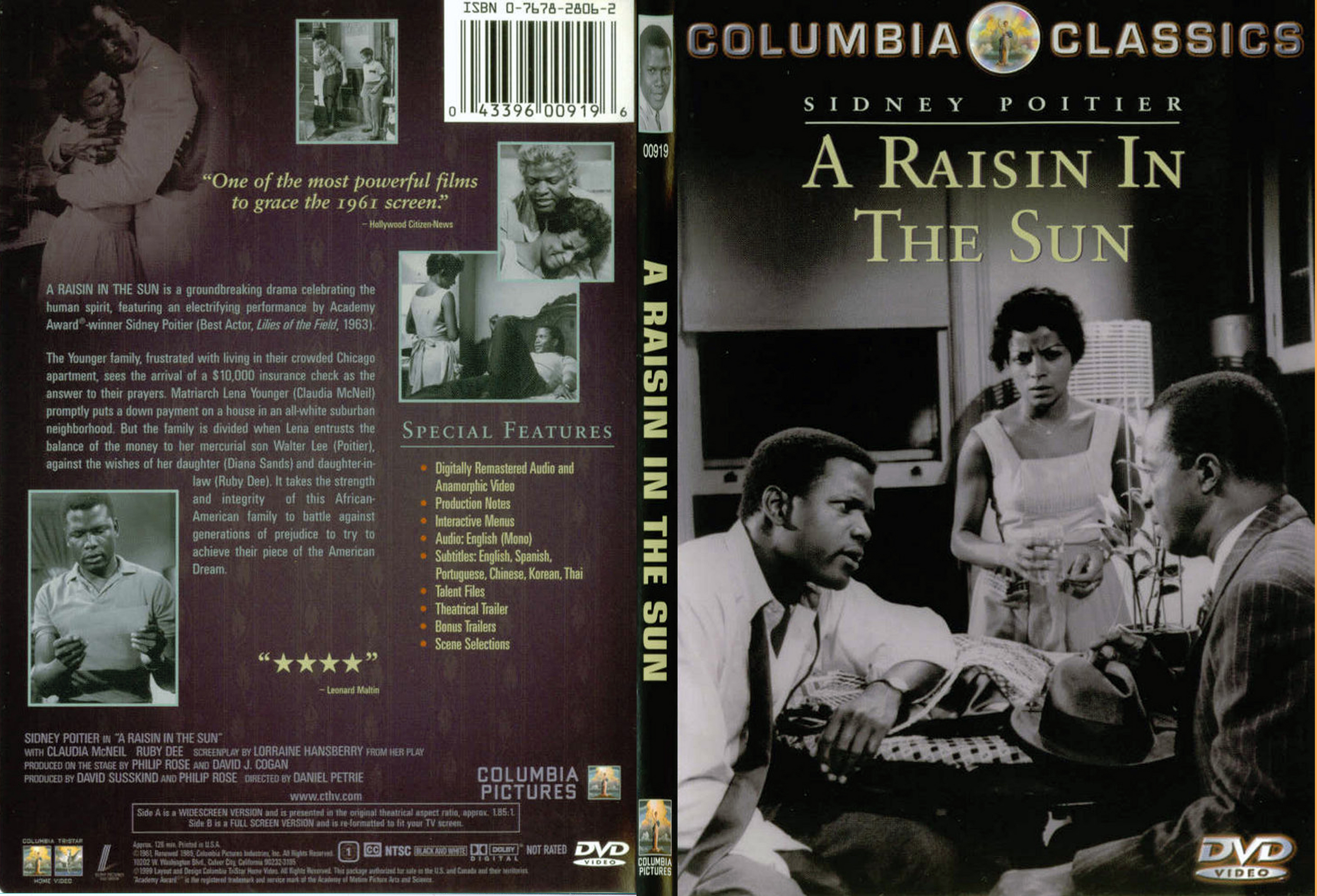 raisin in the sun A raisin in the sun, lorraine hansberry's most celebrated play, is a realistic portrait of a working-class black family struggling to achieve the american dream of careers and home ownership.