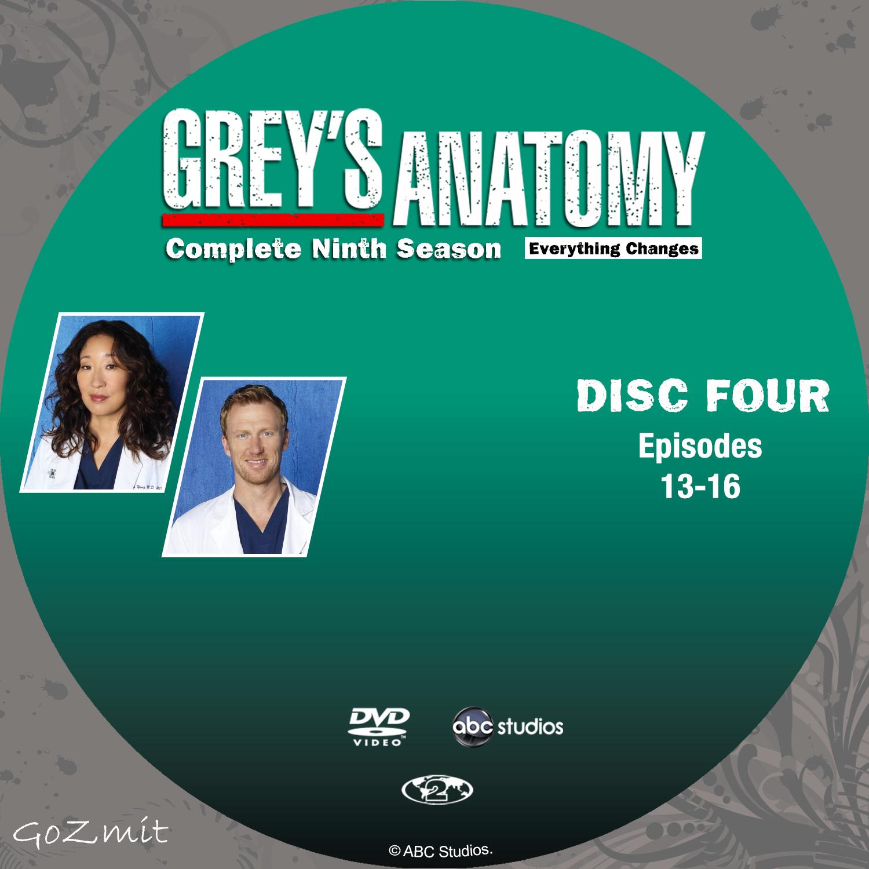 Grey anatomy 9