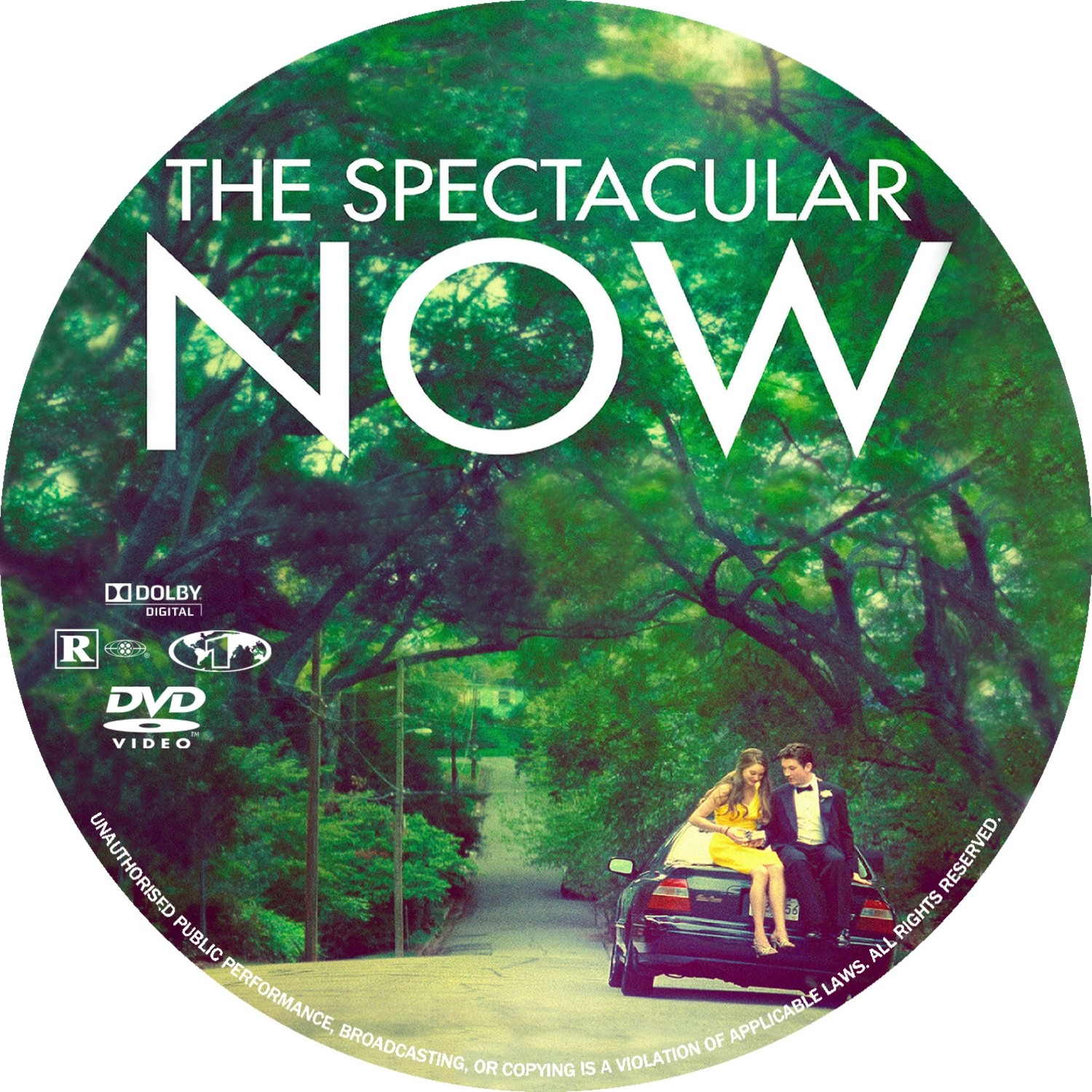Covers Box Sk The Spectacular Now High Quality Dvd Blueray