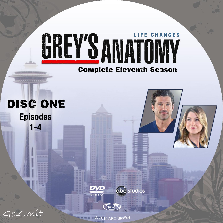 COVERS.BOX.SK ::: Grey\'s Anatomy - Season 11 (Nordic) - high quality ...